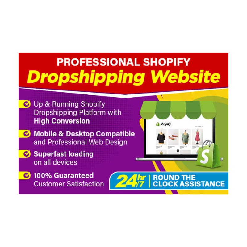 create-professional converting shopify dropshipping